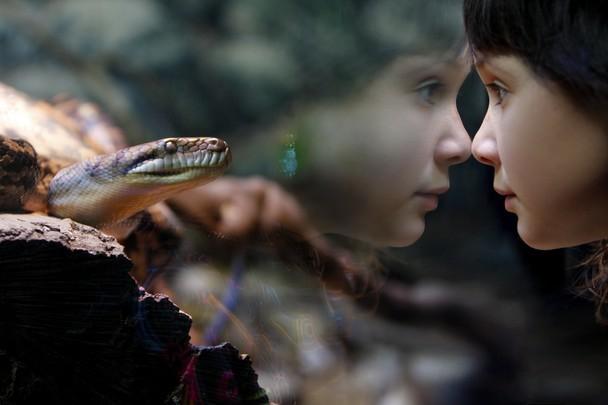 Ảnh đẹp thể loại Khoảnh khắc Cuộc sống của National Geographic