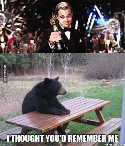 Con gấu trong phimThe Revenant