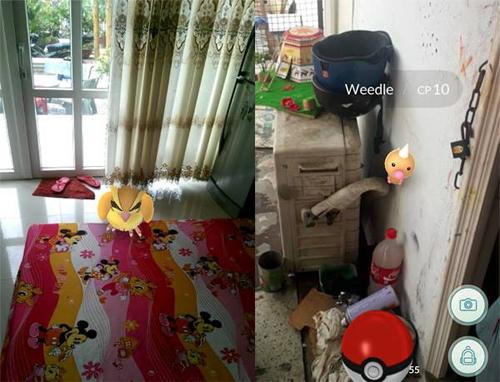 nguoi-dung-facebook-viet-hao-hung-ru-nhau-bat-pokemon-2