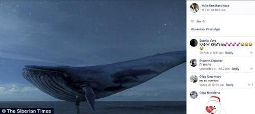 Bức ảnh cá voi được Ulia chia sẻ trên mạng xã hội.