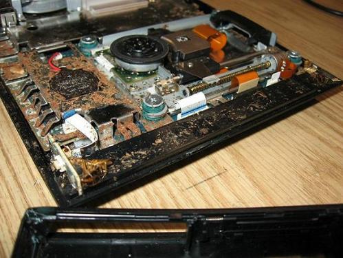 Gián bị rang cháy trong máy PS4.