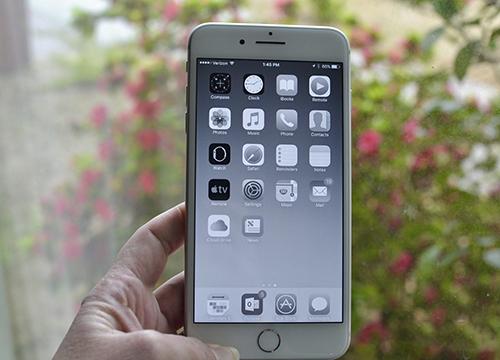 Tính năng Grayscale trên iPhone, có thể kích hoạt bằng cách vào Settings > General > Accessibility > Display Accommodations > Color Filters > Grayscale.