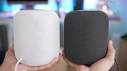 Apple có thể ra phiên bản giá rẻ của Google Home.