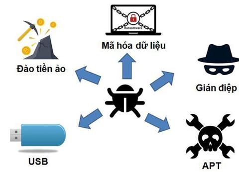 Những loại mã độc phổ biến ở Việt Nam.