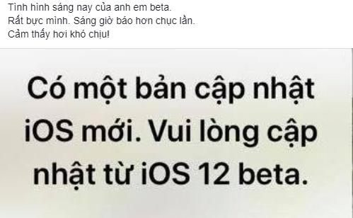 Một người dùng Việt phàn nàn về thông báo cập nhật trên iOS 12 beta xuất hiện vào sáng nay.