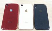 iPhone 9 'giá rẻ' lộ ảnh thực tế với ba màu