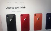 iPhone 9 xuất hiện thêm màu xanh và cam