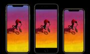 Liệu iPhone Xs Max 6,5 inch có ra đời nếu Steve Jobs còn sống