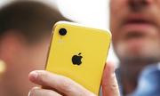 Doanh số iPhone XR sẽ ổn định hơn XS trong tương lai