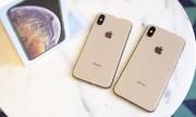 iPhone bán chậm, đối tác Apple giảm dự đoán về doanh thu