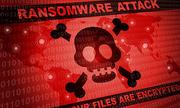 1,6 triệu máy tính tại Việt Nam bị virus xóa dữ liệu năm 2018