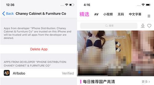 Một ứng dụng khiêu dâm có thể cài trên iOS thông qua chứng chỉ doanh nghiệp. Ảnh: TechCrunch