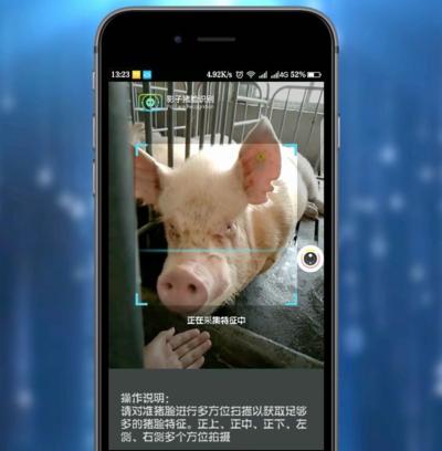 Yingzi sử dụng video để chụp ảnh khuôn mặt lợn vì chúng di chuyển rất nhiều.
