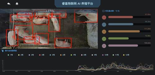 AI, tự động hóa, Big Data... đều được áp dụng vào việc phân tích dữ liệu và chăn nuôi lợn ở Trung Quốc.
