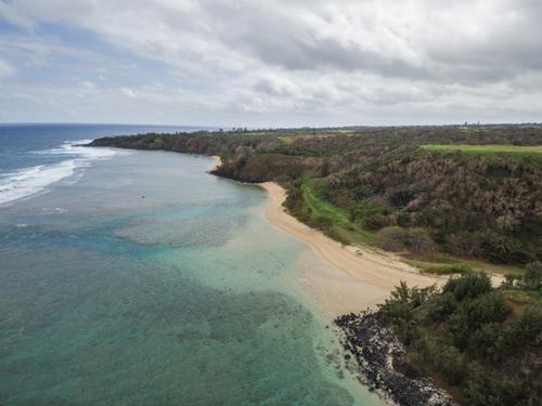 Đường bờ biển đẹp và hoang sơ là một phần của khu đất. Ảnh: Gizmodo.