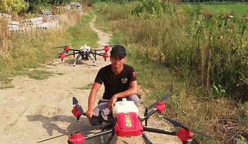 Zhu trên cánh đồng của một nông dân, nơi anh làm việc. Ảnh Handout