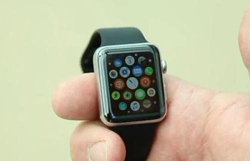Chiếc Apple Watch của Bainter vẫn chạy sau sáu tháng bị rơi xuống biển.