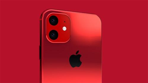 iPhone XR 2019 được cho sẽ có thêm hai màu xanh lá cây và tím oải hương. Trong đó, xanh lá cây từng xuất hiện trên iPhone 5c vỏ nhựa. Còn màu tím là lần đầu góp mặt trên smartphone của Apple dù được Samsung và nhiều nhà sản xuất smartphone Trung Quốc ưa chuộng từ lâu.