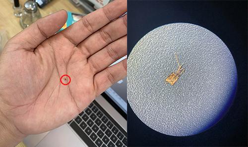 Sim ghép dùng để hô biến iPhone lock thành quốc tế có kích thước rất nhỏ. Ảnh: Vũ Phương.