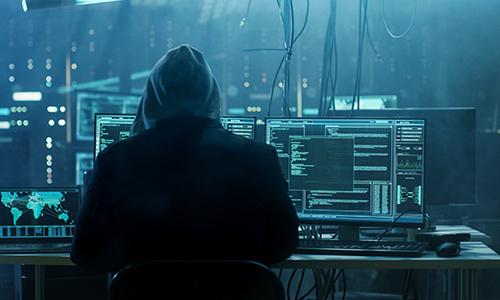 Hầu hết người trong độ tuổi lao động tại Bulgaria bị đánh cắp thông tin. Ảnh: InterDev