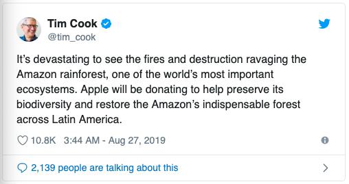 Cook nói về cháy rừng ở Amazon và cho biết sẽ ủng hộ khắc phục hậu quả.
