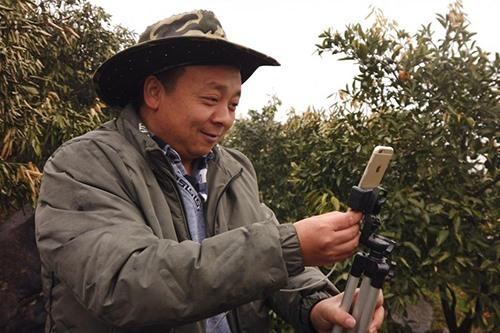 Zhong Haihui, một người nông dân trồng rau quả ở miền Trung Trung Quốc sử dụng iPhone 6, một chân tripod nhỏ và sạc dự phòng khi đang live-stream video tại vườn cam của mình. Ảnh: SCMP.