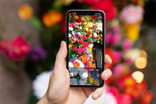 Camera và pin là hai điểm cộng của iPhone 11. Ảnh: Verge.