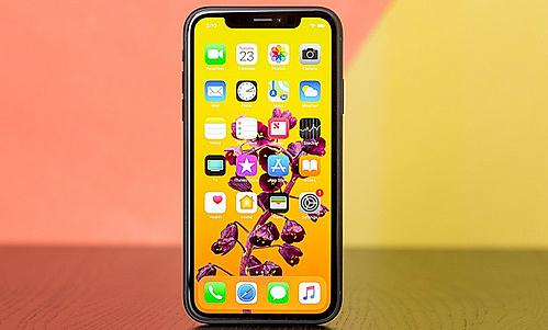 iPhone XR ra mắt năm ngoái cùng iPhone XS và XS Max nhưng không được chuộng ở Việt Nam.