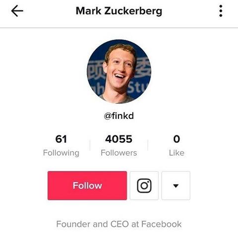Tài khoản @finkd được cho là của CEO Facebooktrên TikTok. Ảnh: Business Insider.