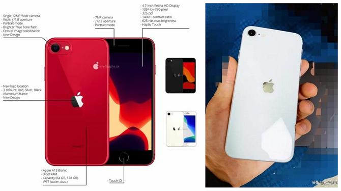 Mặt lưng của iPhone 9 giống iPhone 8, chỉ khác ở vị trí logo Apple. Ảnh: GizChina.