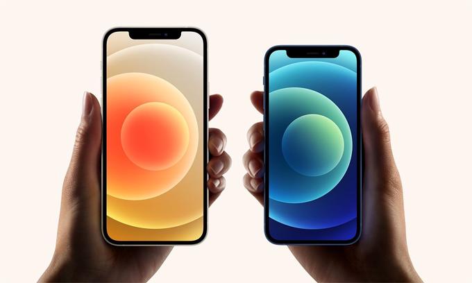 Bốn mẫu iPhone 12 được công bố trong sự kiện Hi, Speed của Apple. Ảnh: Apple.