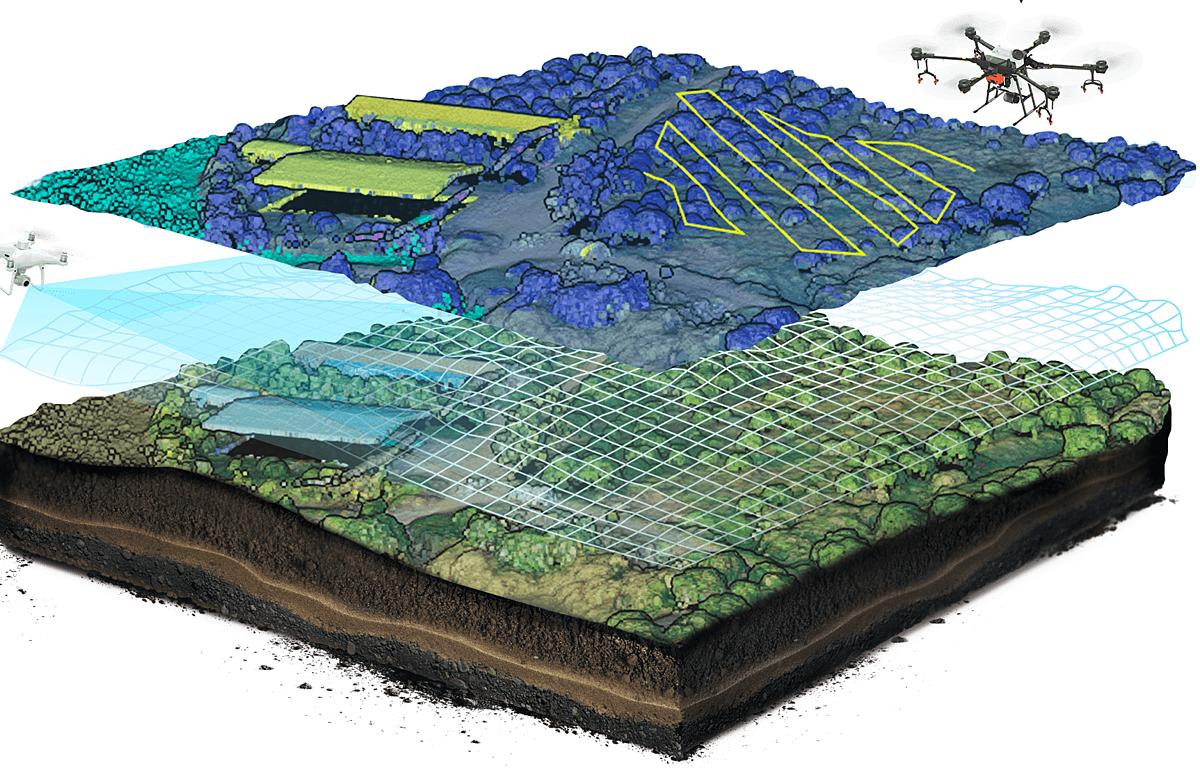 Hệ thống camera kết hợp AI giúp lập bản đồ cây trồng.