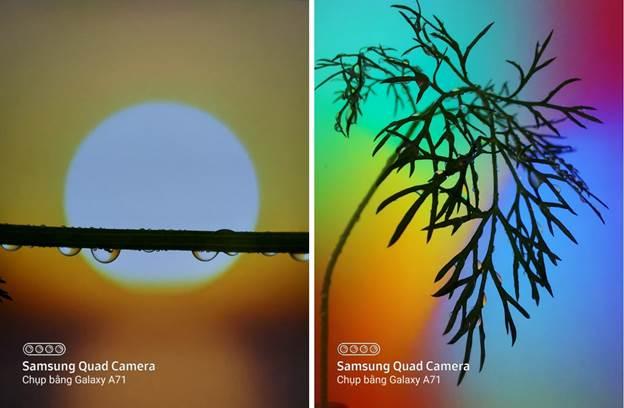 Galaxy A71 dẫn đầu trào lưu nhiếp ảnh macro trên di động - 2
