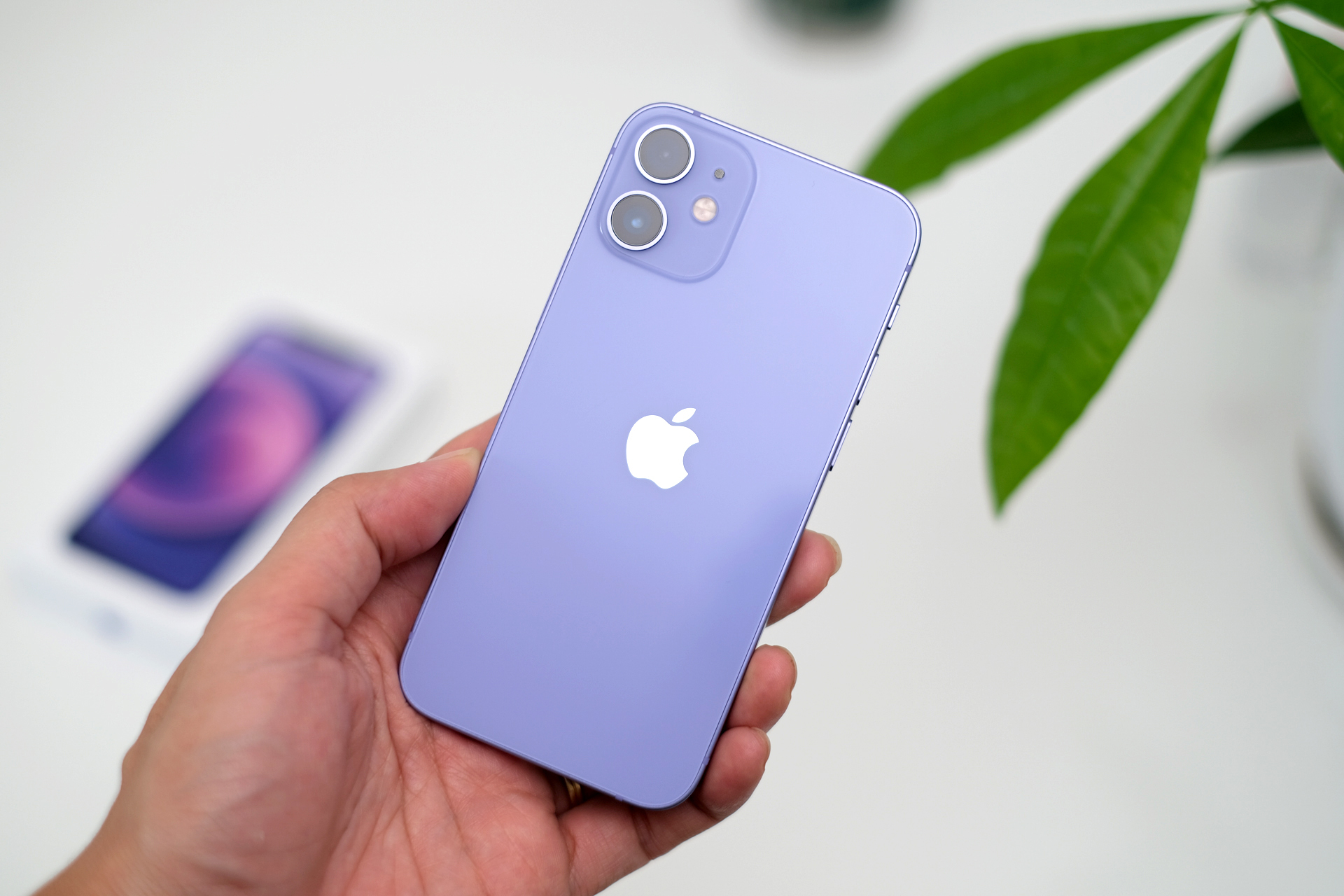 iPhone 12 mini màu tím có tông hơi nhạt giống màu hoa oải hương hoặc hoa tử đằng. Ảnh: Tuấn Hưng.