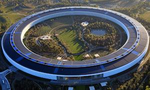 Nhân viên Apple không muốn trở lại văn phòng làm việc