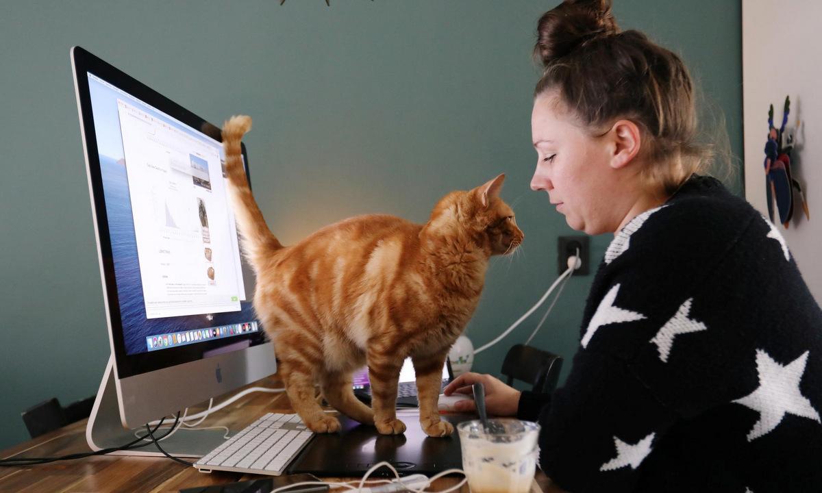 Một người phụ nữ làm việc tại nhà ở Hà Lan hồi đầu năm 2020. Ảnh: Reuters.